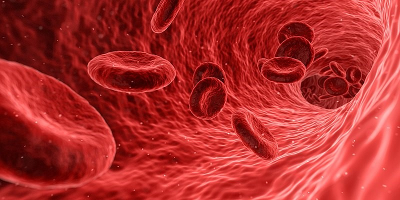 Is Platelet-Rich Plasma a Viable Therapy Option?